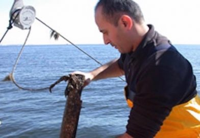 Long Island Clam Disease Research Gets Federal Funding
